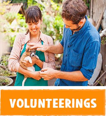 Internships, volunteering in Argentina, South America