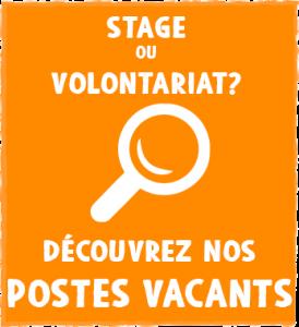 Stage ou Volontariat en Amérique du Sud