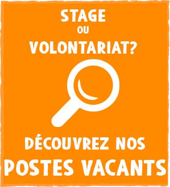 Last minute et postes vacants pour stages et bénévolats en Amérique du Sud