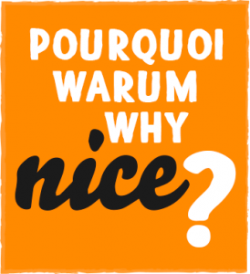 Review - Why-Nice