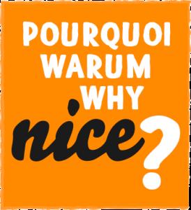 Why-Nice-uni