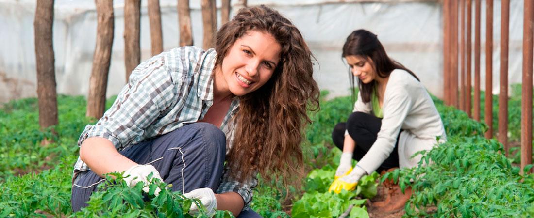 Mach ein Volunteer im Ausland - Volunteer programme abroad