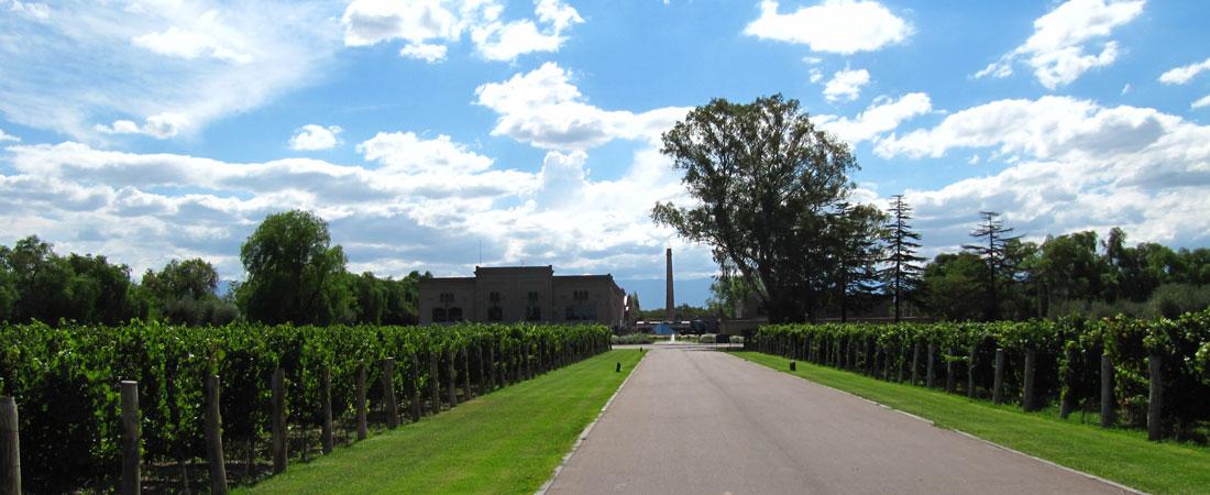 Für Weinliebhaber: Mendoza Argentinien - For wine lovers: Mendoza Argentina