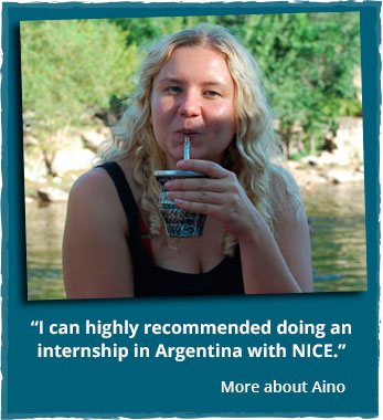 Internship and volunteering abroad
