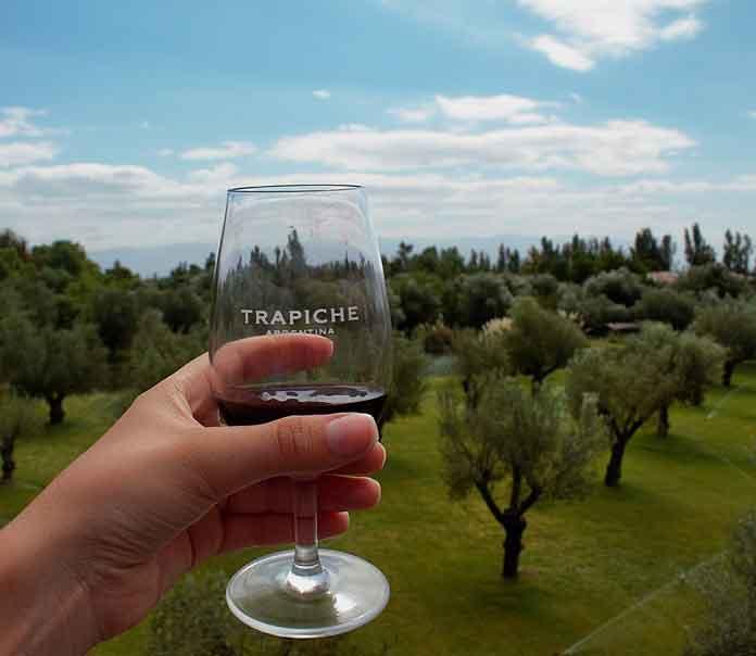 Wein Trapiche Argentinien