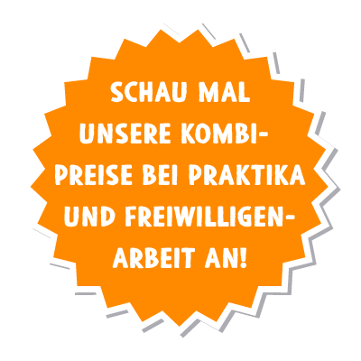 NICE Preise Kombi