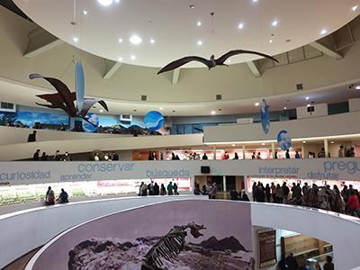 Museen: Ciencias Naturales
